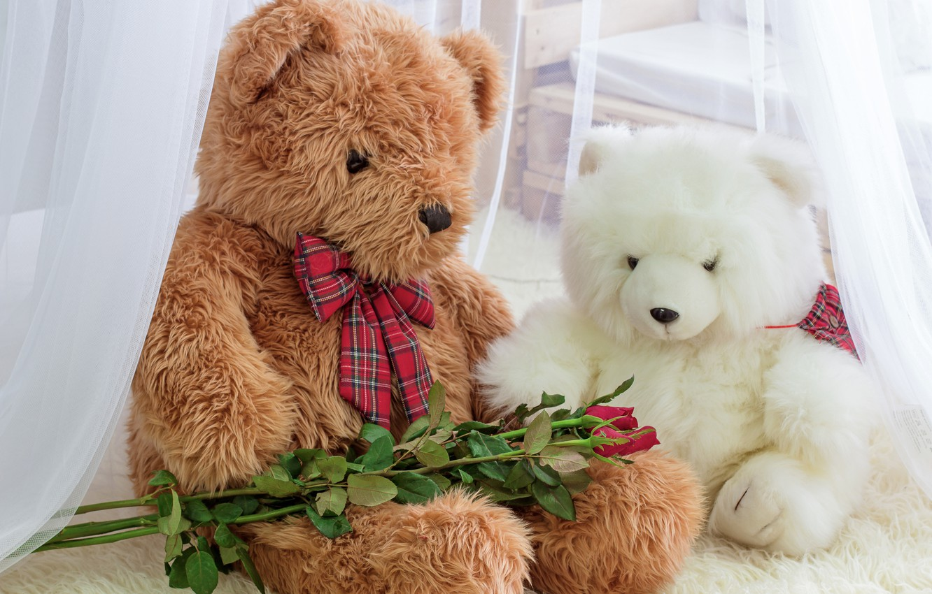 Wallpaper Toy Roses Bear Bear Romantic Teddy Roses Images For