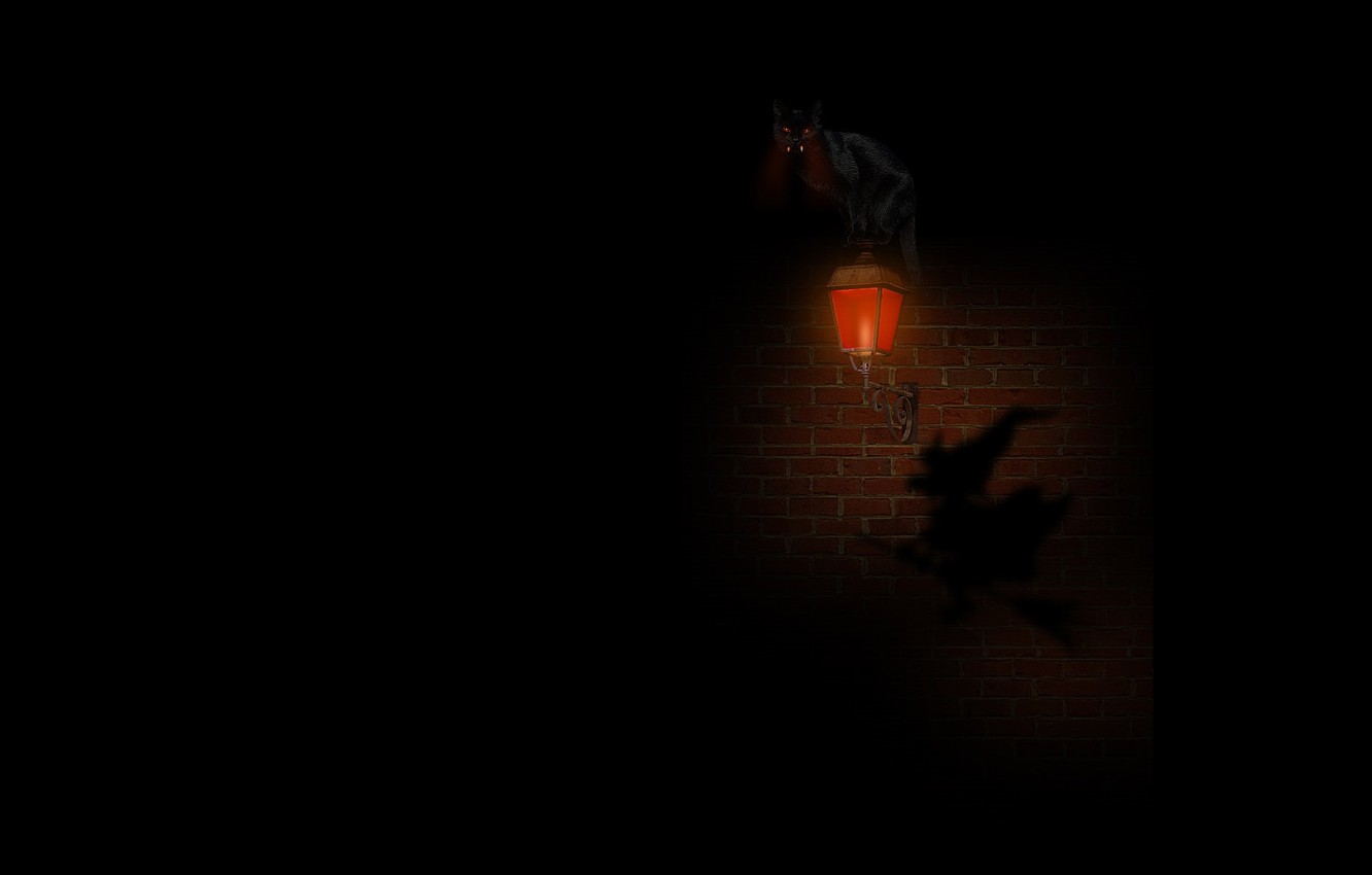 Photo wallpaper night, fear, darkness, shadow, lantern, fangs, brick wall, burning eyes, witch, black cat, on the …