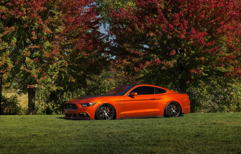 Photo wallpaper Mustang, Ford, Orange, Wheels, Niche