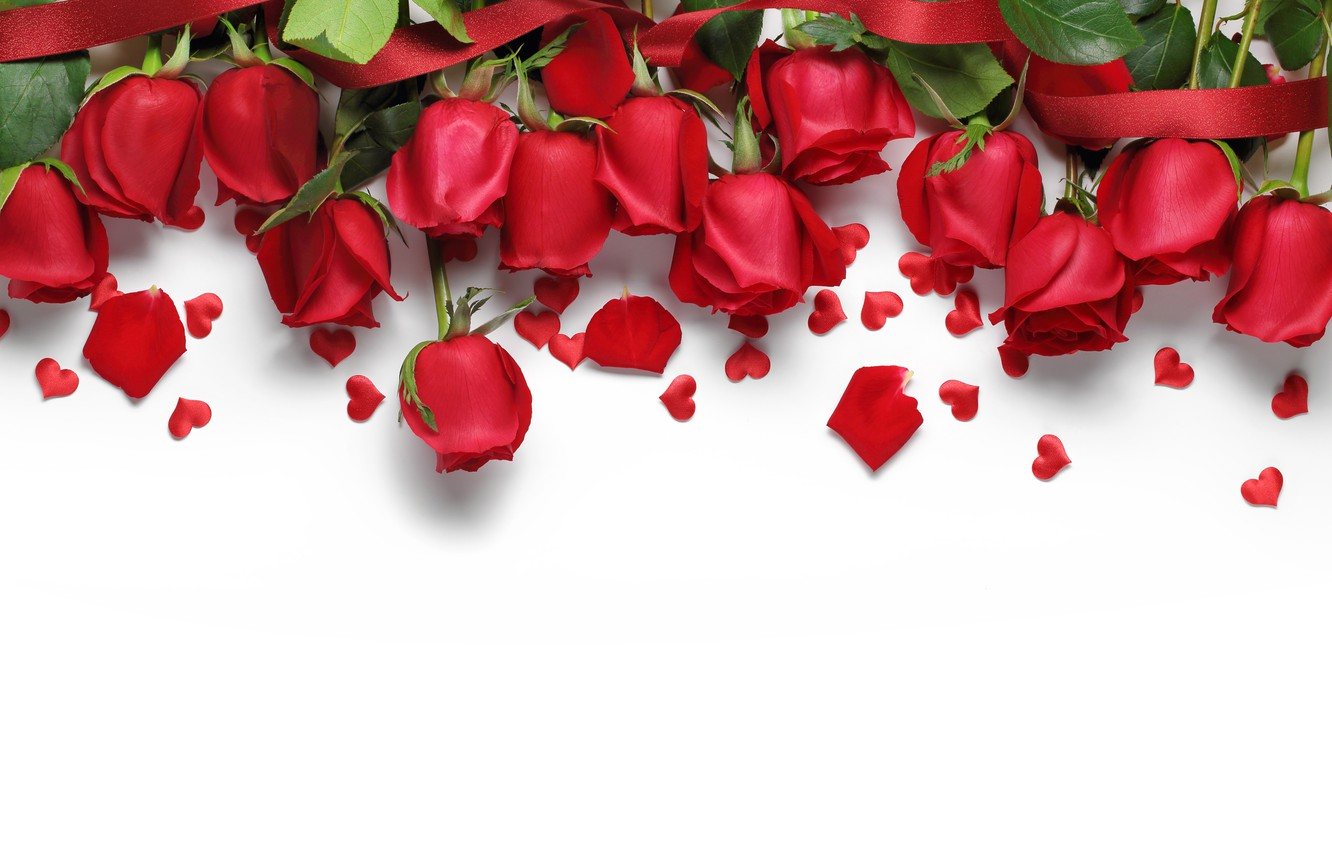 Photo wallpaper hearts, red, love, flowers, romantic, hearts, Valentine's Day, gift, roses, red roses