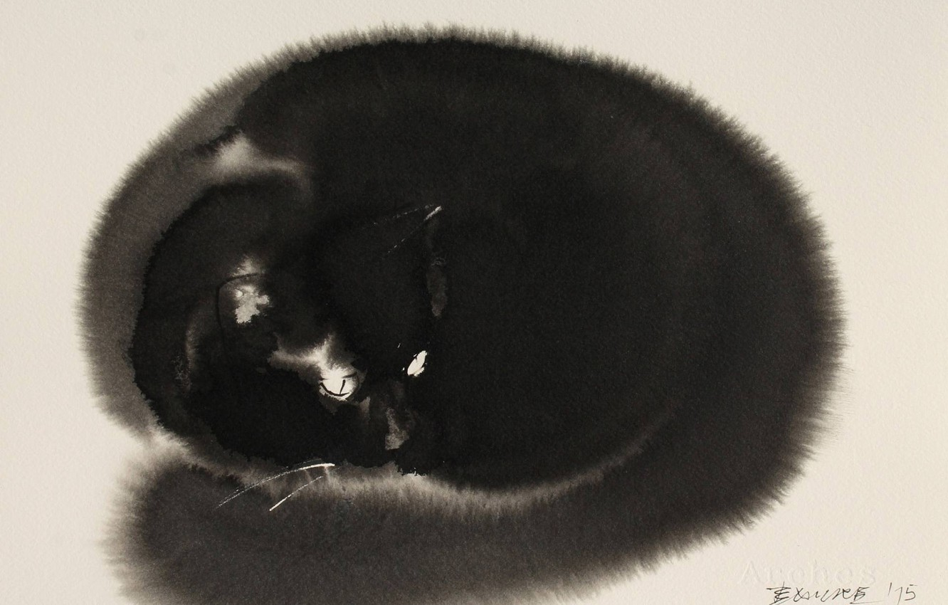 Photo wallpaper look, figure, Koshak, watercolor, painting, light background, pussy, black cat, black and white, equipment in …