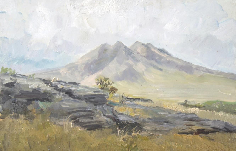 Photo wallpaper landscape, 2008, Aibek Begalin, Hill