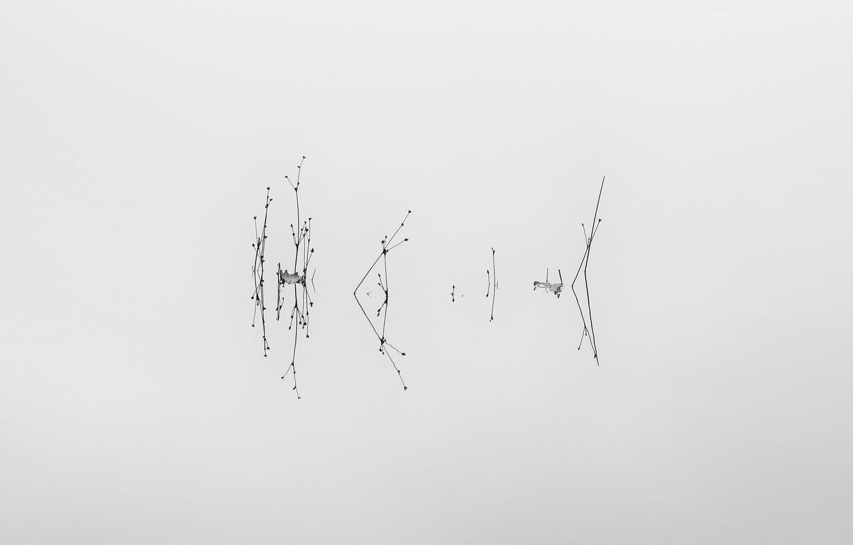 Photo wallpaper water, lake, minimalism