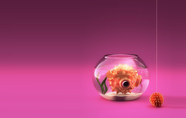 Photo wallpaper toy, aquarium, fish, minimalism, art, Reynante Martinez, Love is Blind