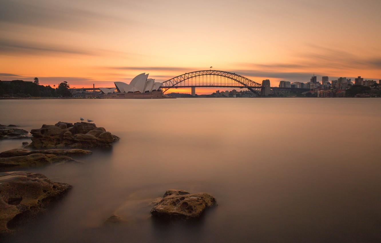 Photo wallpaper bridge, night lights, Australia, Sydney, night lights