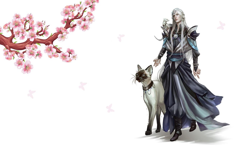 Photo wallpaper cat, butterfly, the game, spring, Sakura, art, MAG, guy, pet