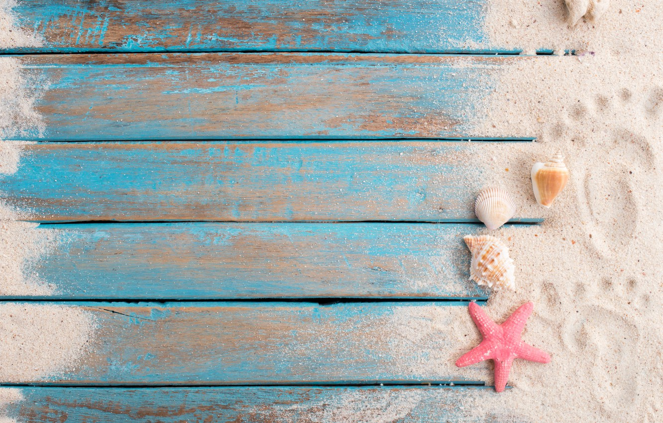 Photo wallpaper sand, beach, star, shell, summer, beach, wood, sand, marine, starfish, seashells