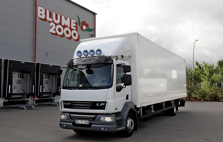 Photo wallpaper white, composition, Parking, van, DAF, DAF, platform, 4x2, DAF LF55.250