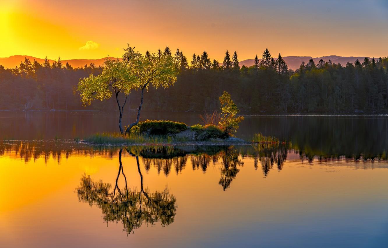 Photo wallpaper lake, reflection, tree, Norway, island