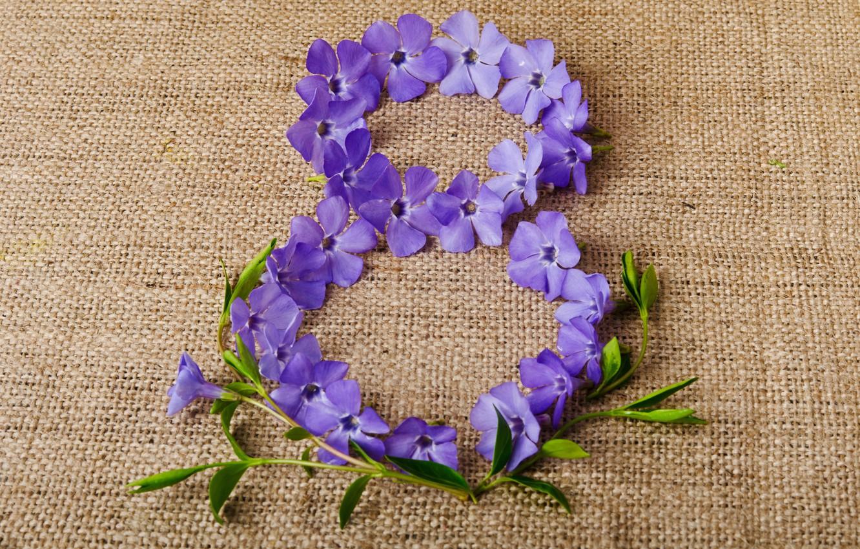 Wallpaper Flowers Background Purple Figure Fabric March