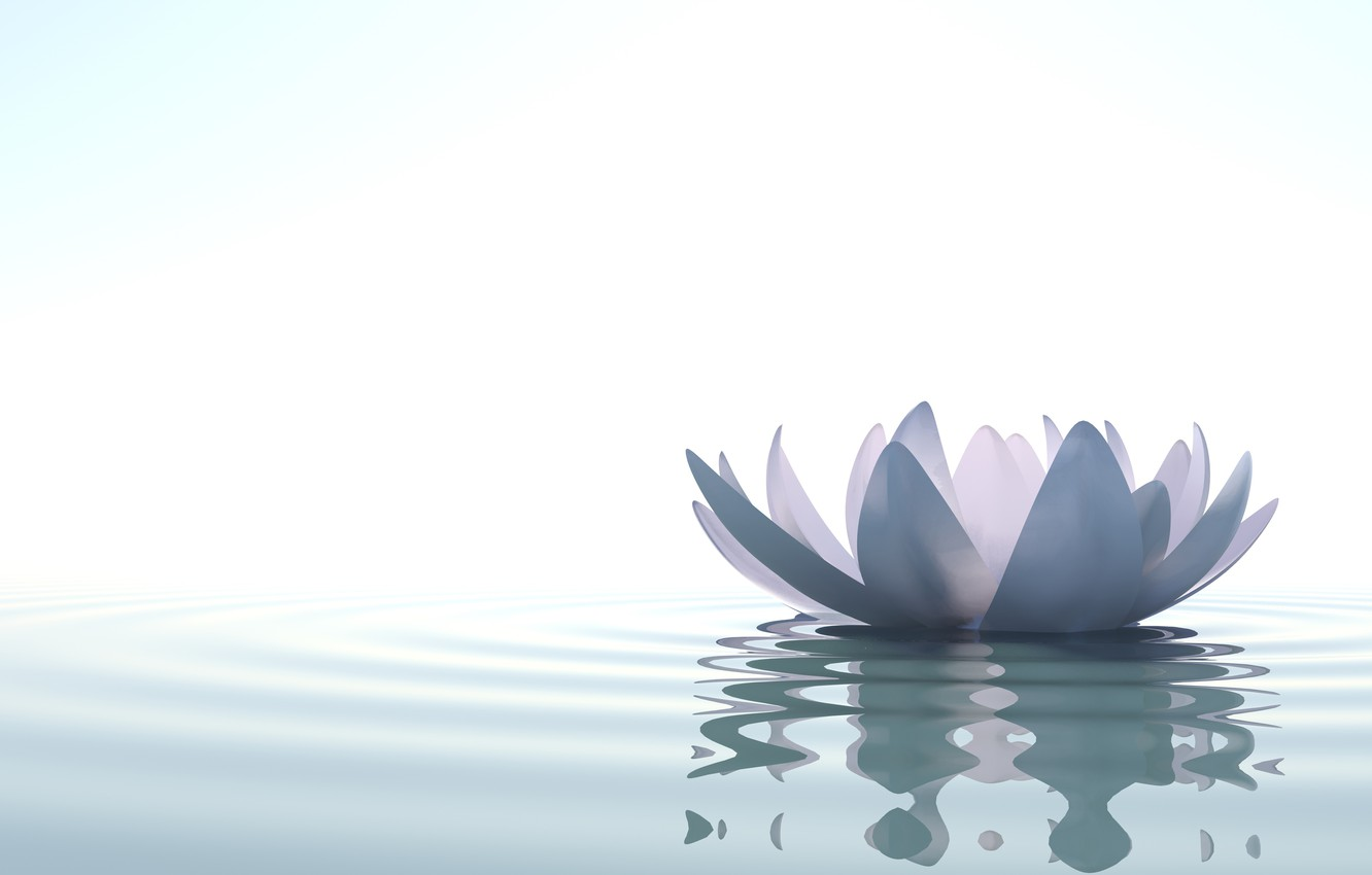 Photo wallpaper water, lake, art, Lotus