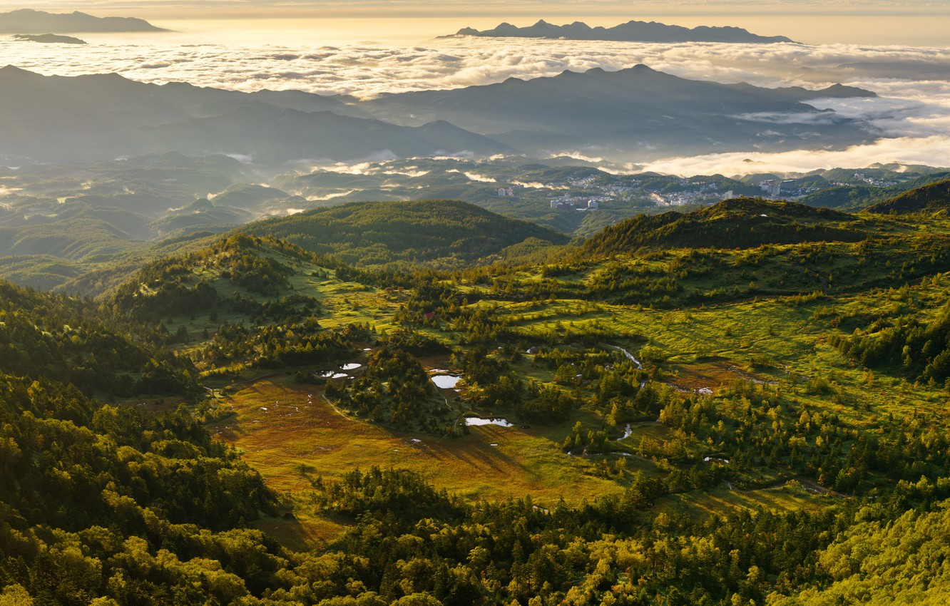 Photo wallpaper greens, clouds, trees, mountains, fog, dawn, morning, Switzerland, panorama, the view from the top