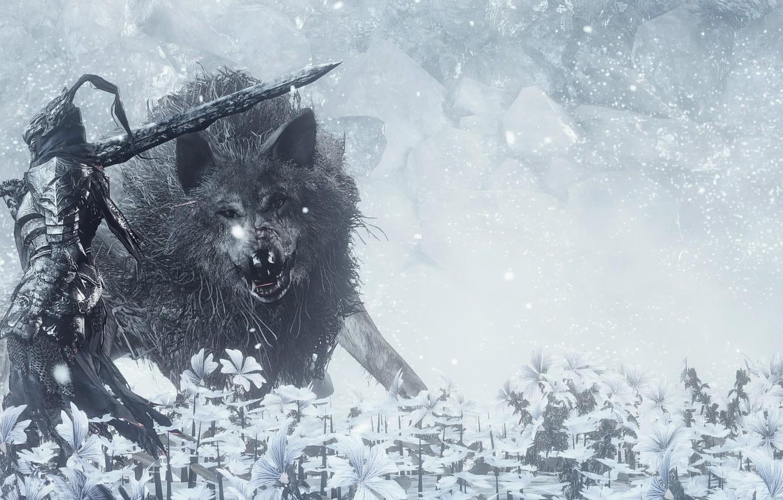 Wallpaper sword, game, flower, armor, ken, animal, wolf