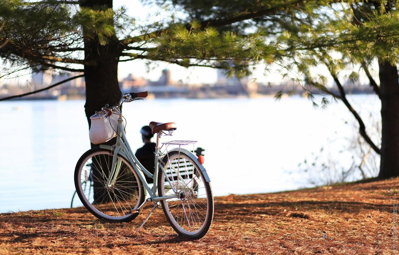 Photo wallpaper bike, the city, river, Canada, Ontario, Canada, bicycle, Ontario, cruiser, Quebec, QC, Ottawa, cruiser, Ottawa
