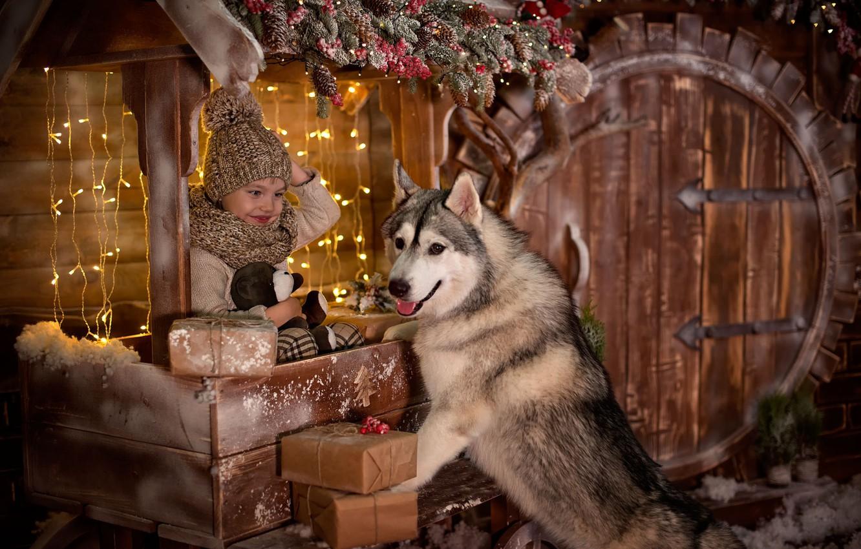 Photo wallpaper joy, holiday, new year, dog, boy