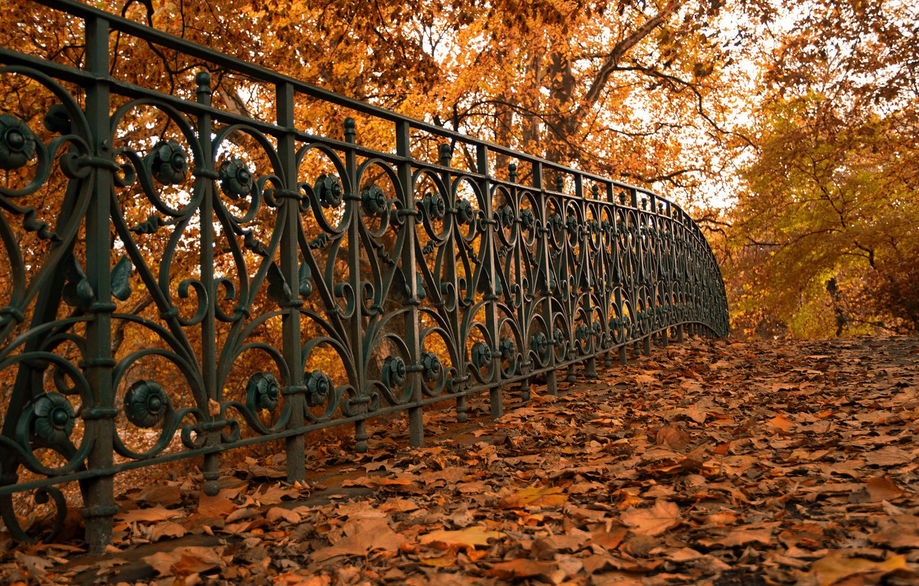 Photo wallpaper autumn, leaves, street, the fence
