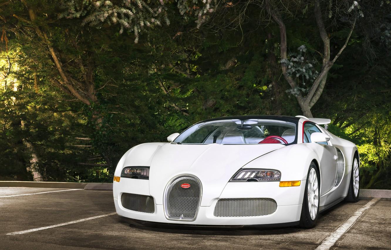 Photo wallpaper Bugatti, Veyron, White, Vitesse, Wheels