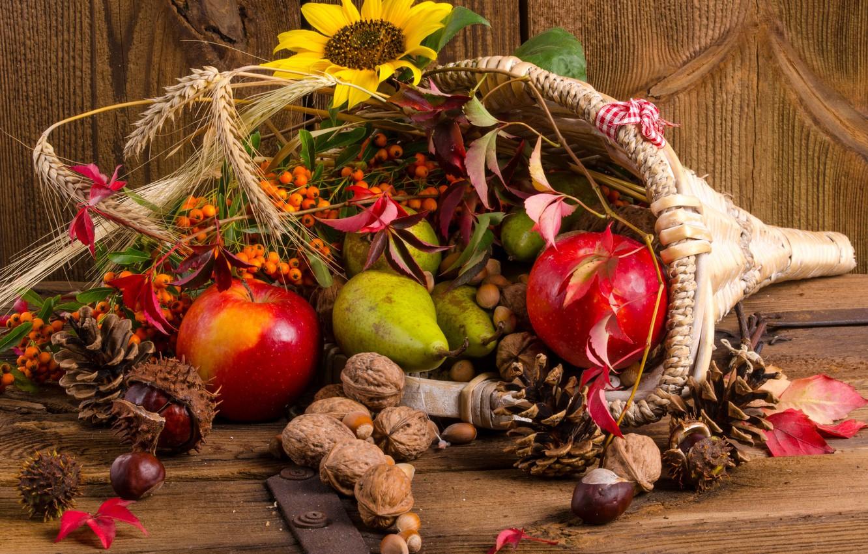 Photo wallpaper fruit, nuts, basket, bumps, Rowan, the gifts of autumn