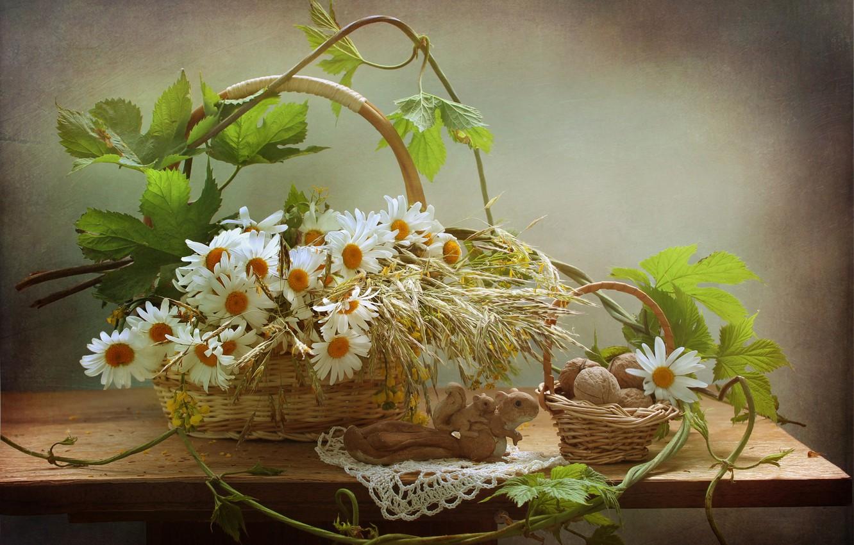 Photo wallpaper leaves, flowers, table, plant, chamomile, figurine, nuts, still life, eel, basket, squirrels, walnut