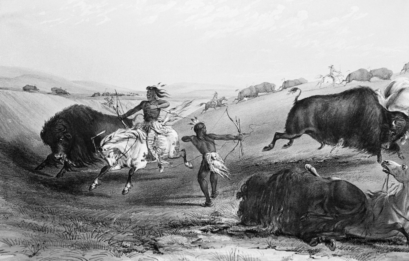 Photo wallpaper horse, The Indians, hunting, Buffalo, wild West