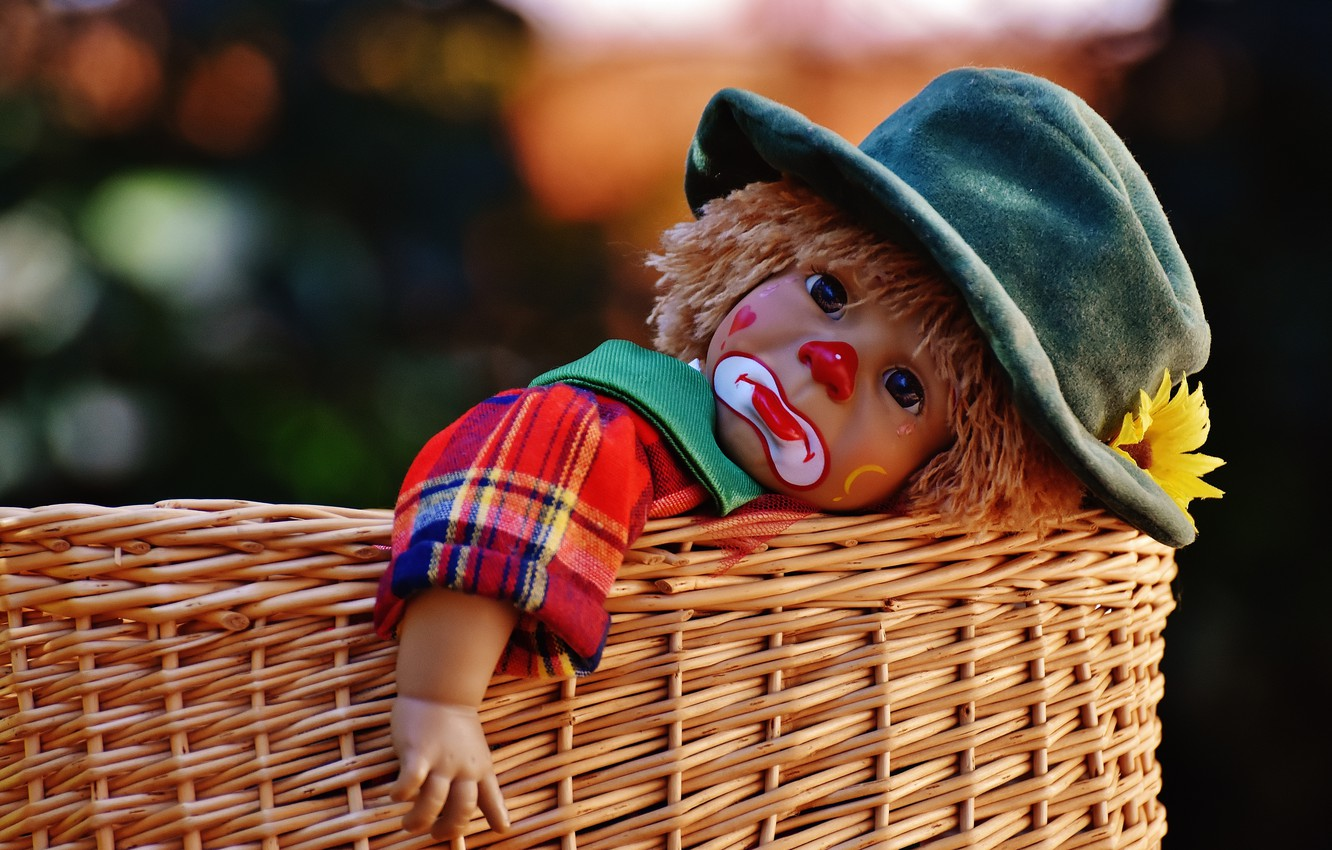Photo wallpaper flower, basket, toy, the game, doll, clown, tear