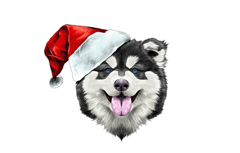 Photo wallpaper happiness, holiday, hat, new year, dog, hat, new year, happy, dog, 2018, santa claus