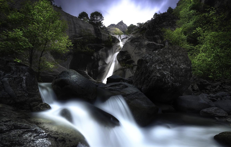 Photo wallpaper trees, stones, waterfall
