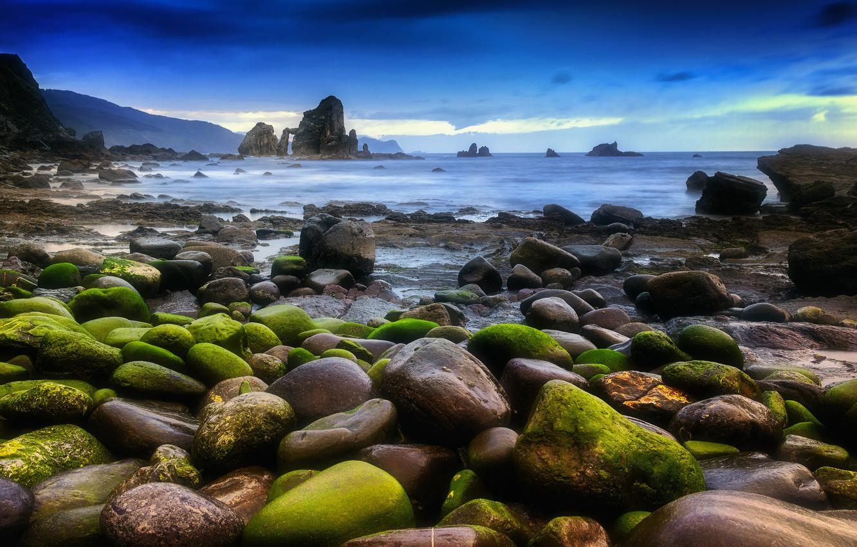 Photo wallpaper sea, landscape, stones, moss, Nature