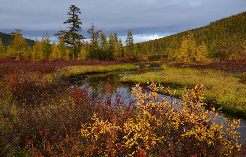 Photo wallpaper autumn, Kolyma, stream Unknown