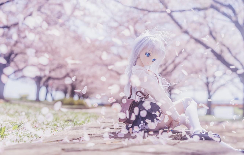 Photo wallpaper mood, toy, doll, petals