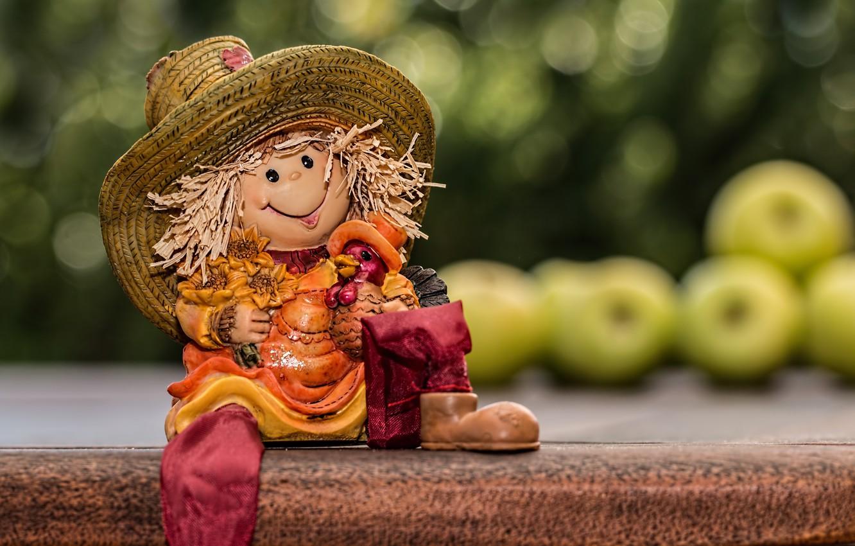 Photo wallpaper apples, toy, doll, shelf