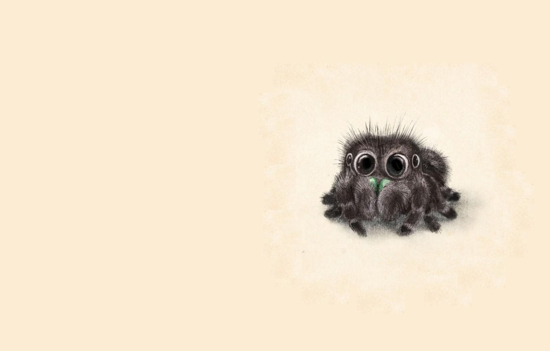 Photo wallpaper eyes, baby, art, pussy, children's, spider, Sydney Hanson
