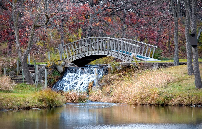Photo wallpaper Waterfall, Autumn, Nature, Bridge, Autumn, Waterfall, The bridge