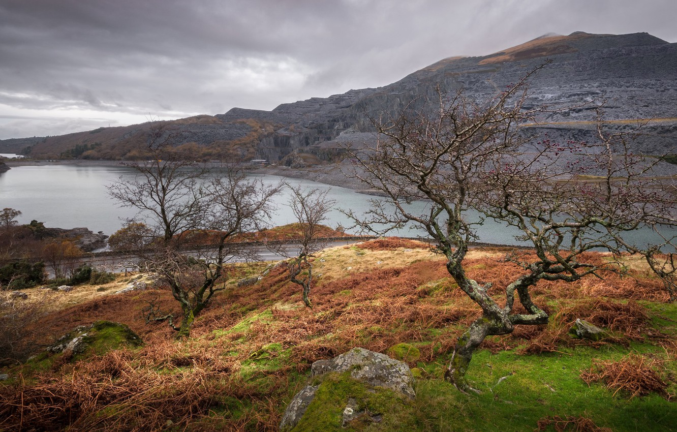 Photo wallpaper clouds, trees, landscape, mountains, lake, Wales, Snowdonia