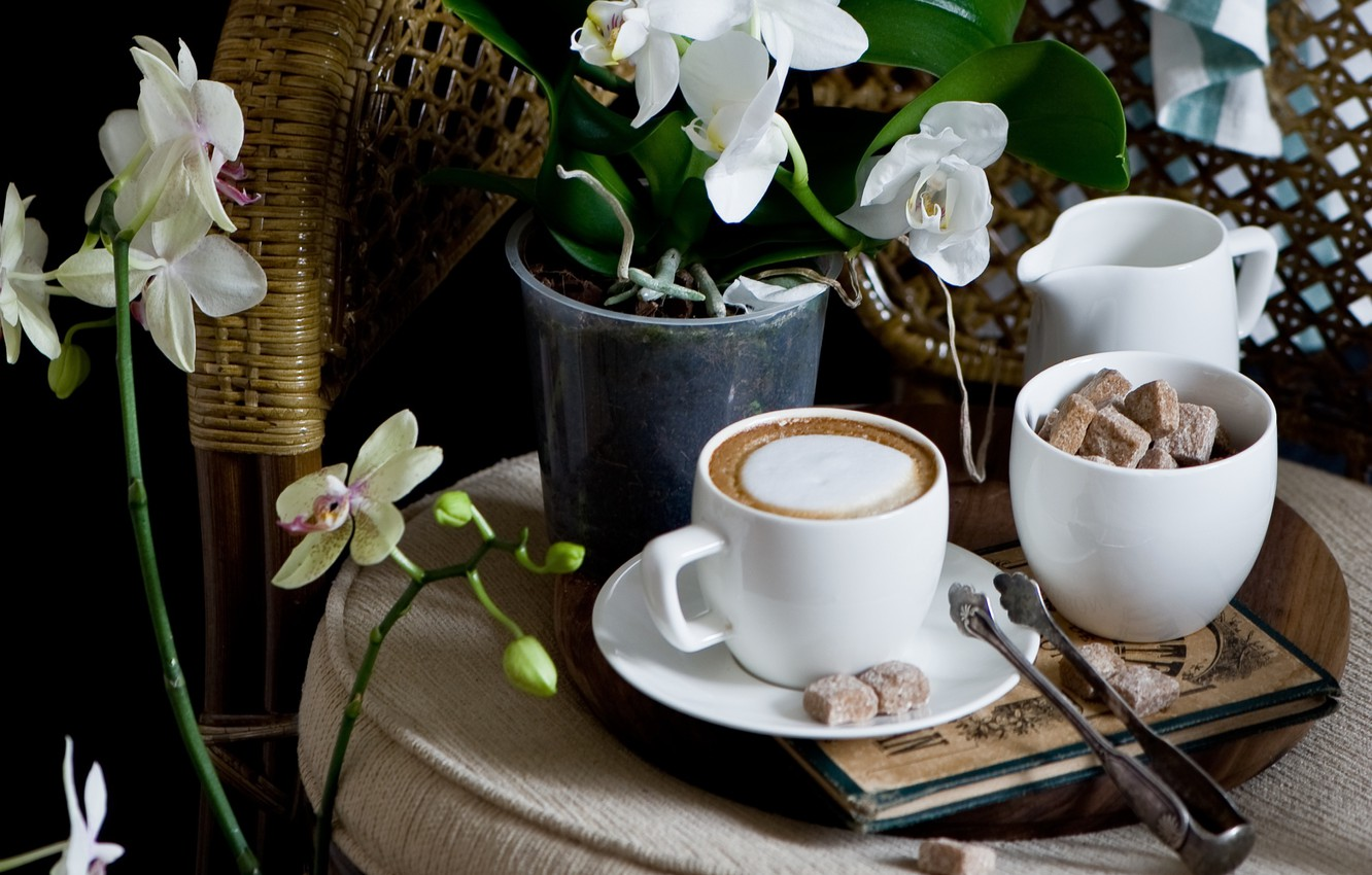 Photo wallpaper coffee, Cup, sugar, Orchid