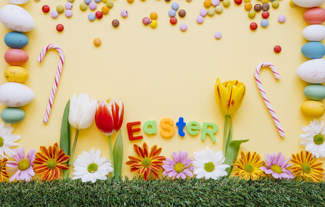 Photo wallpaper flowers, background, holiday, eggs, Easter, tulips