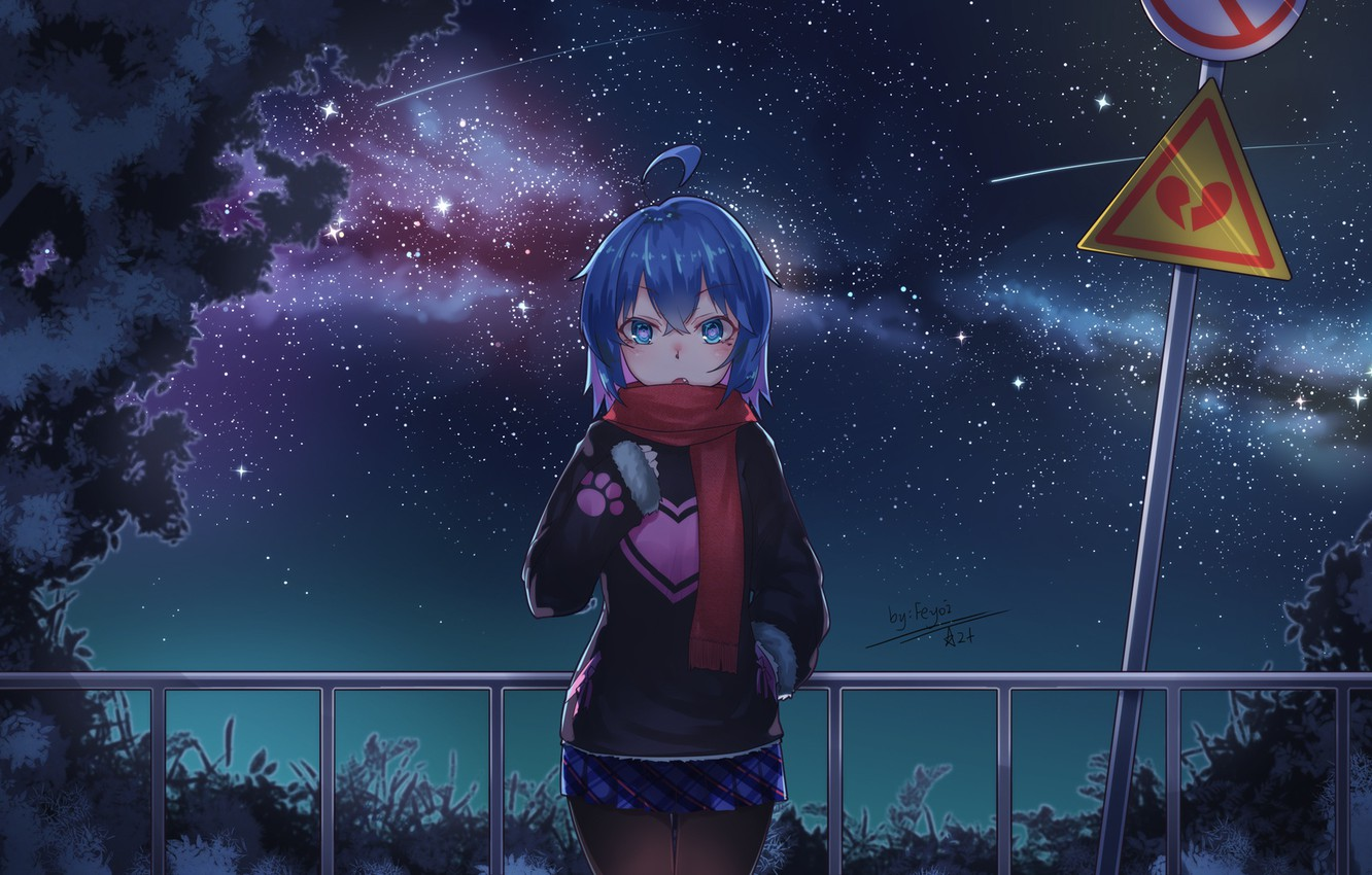 Photo wallpaper night, anime, art, girl
