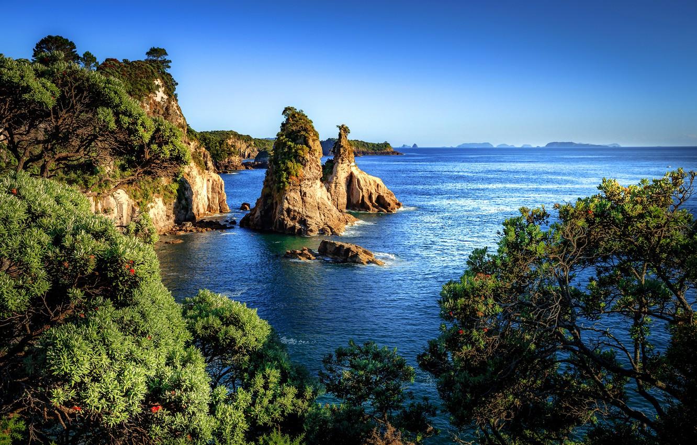 Photo wallpaper sea, the sky, the sun, trees, stones, rocks, coast, New Zealand, horizon, Hahei