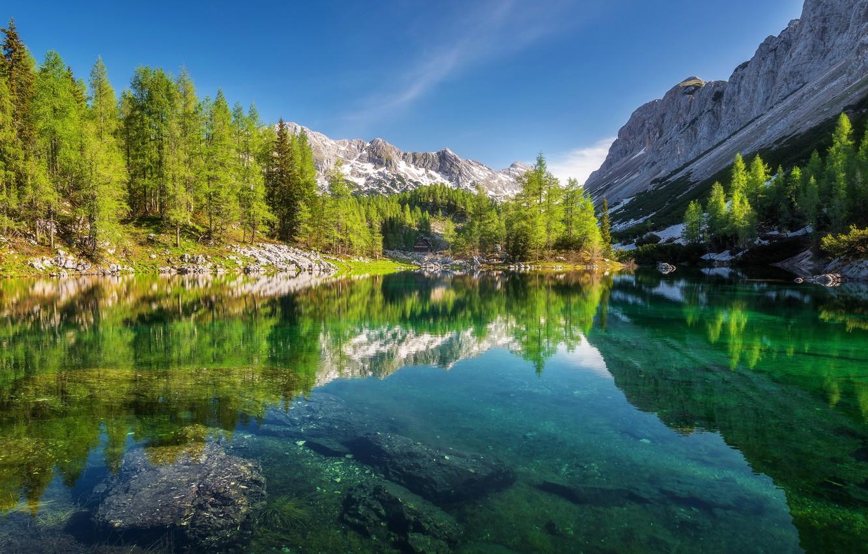 Photo wallpaper forest, trees, mountains, lake, reflection, Slovenia, Slovenia, The Julian Alps, Valley of seven lakes, Julian …