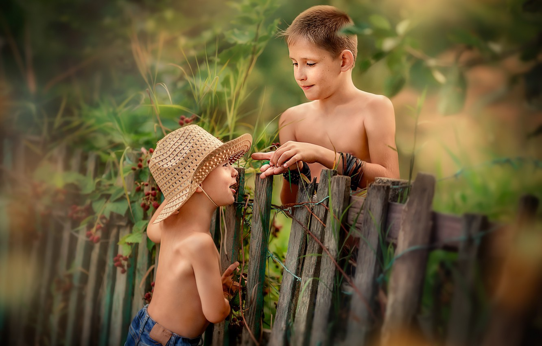 Photo wallpaper nature, children, the fence, boys