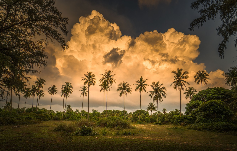 Photo wallpaper clouds, tropics, palm trees, Thailand