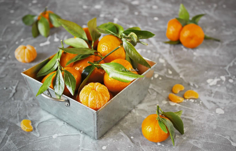 Photo wallpaper leaves, citrus, twigs, tangerines