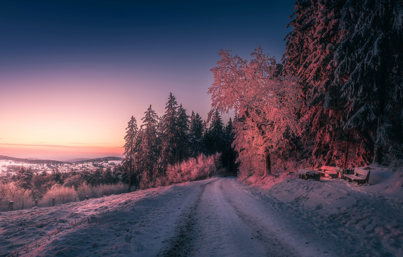 Photo wallpaper winter, forest, snow, sunset, bench