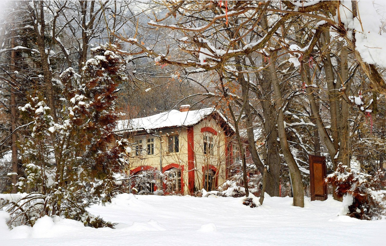 Photo wallpaper Winter, Trees, Snow, House, Frost, Winter, Frost, Snow, Trees