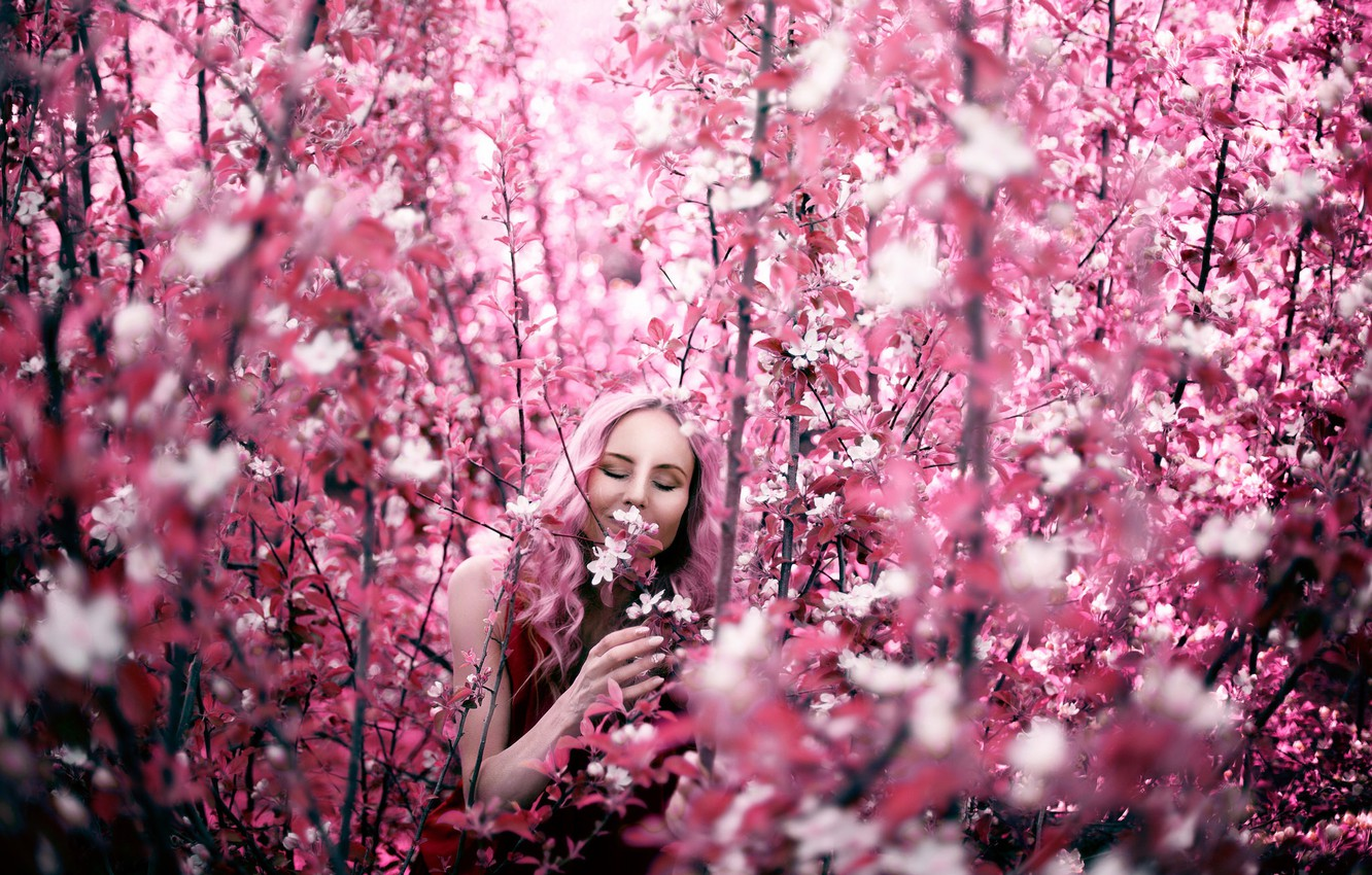 Photo wallpaper girl, branches, spring, flowering