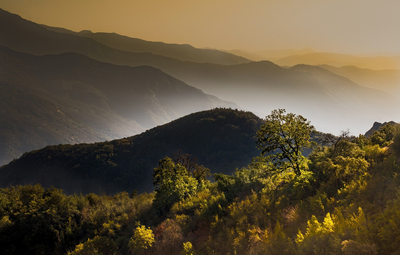 Photo wallpaper autumn, trees, mountains, fog