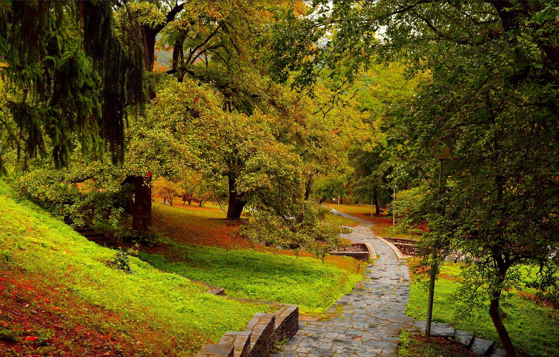 Photo wallpaper Autumn, Trees, Park, Fall, Park, Autumn, Trees