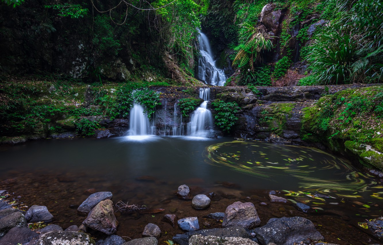 Photo wallpaper forest, river, waterfall, Australia, Lamington National Park, Elabana Falls