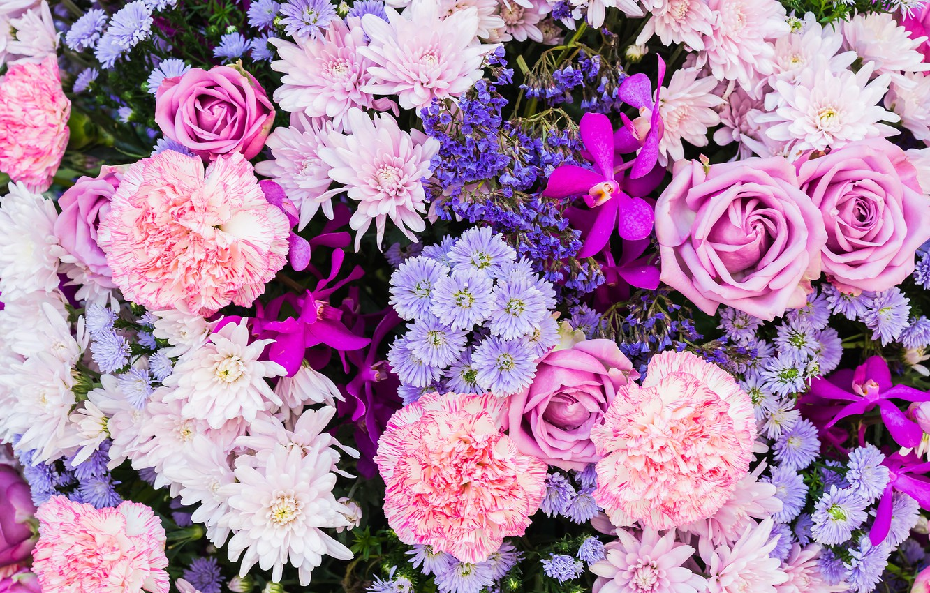 Photo wallpaper flowers, roses, Astra, carnation