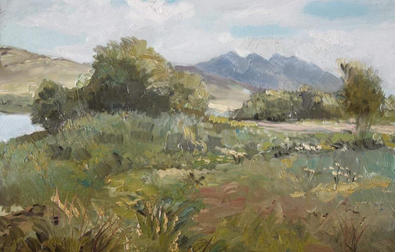 Photo wallpaper landscape, Bush, river, hills, 2008, Aibek Begalin, Spassk. Lake
